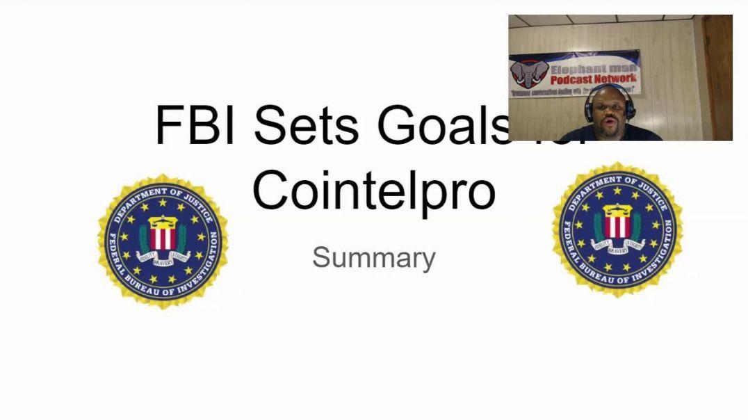 FBI Cointel Pro Summary