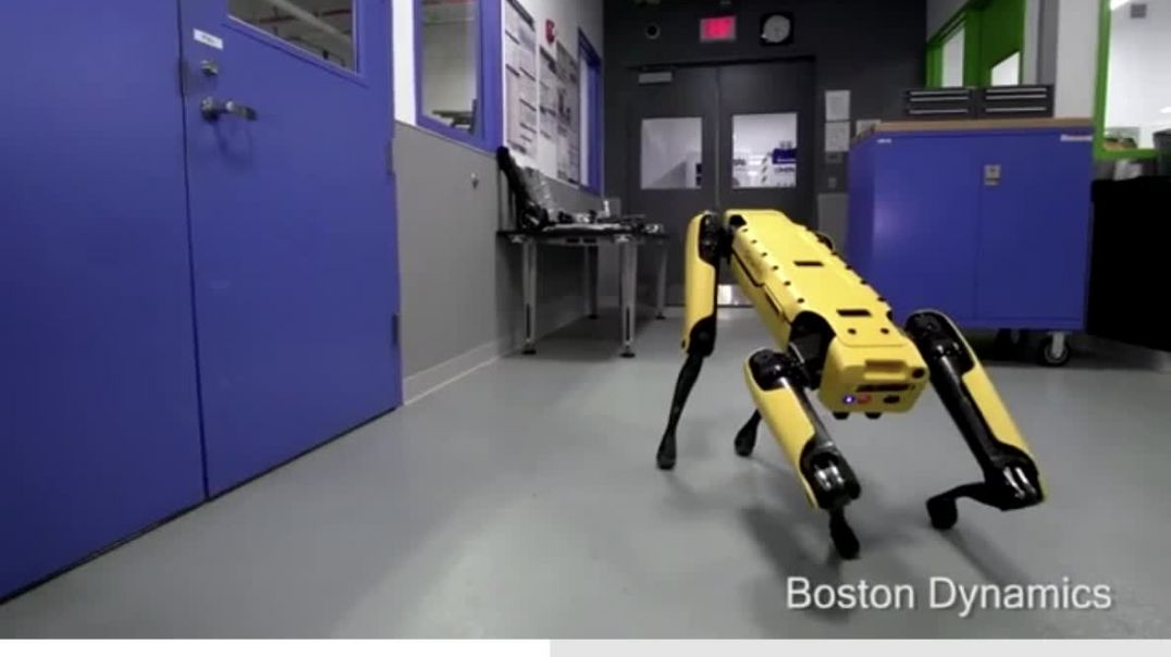 The Gentiles are in real FEAR, the robot dogs have manners!