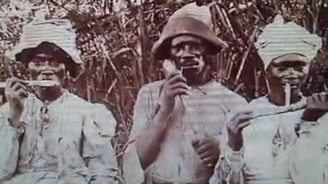 ADOS Negro Hebrews Israelites Christian Descendants of Slaves Exiles US America  Caribbean Reparatio